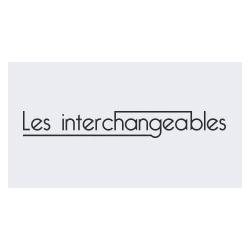 INTERCHANGEABLES